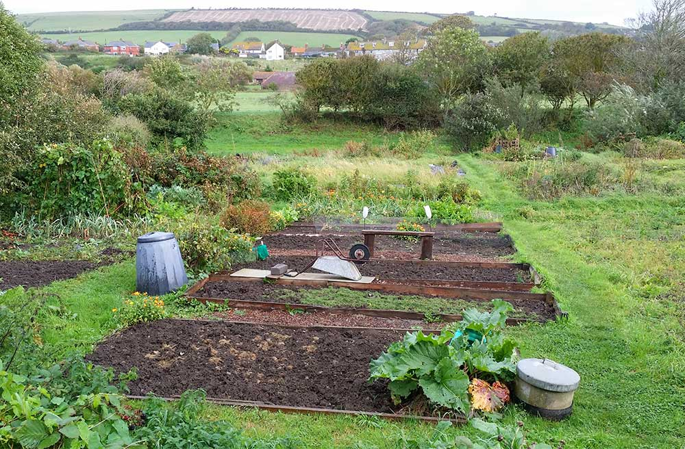 Burton Bradstock Allotments